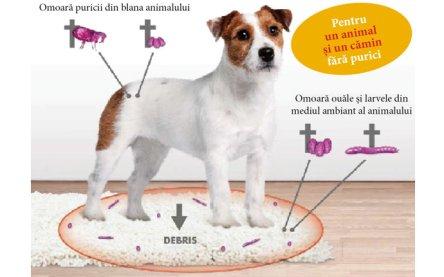 Deparazitare externa si interna pentru caini/pisici Stronghold 15mg ( <2,5kg ) cutie cu 3 pipete [2]
