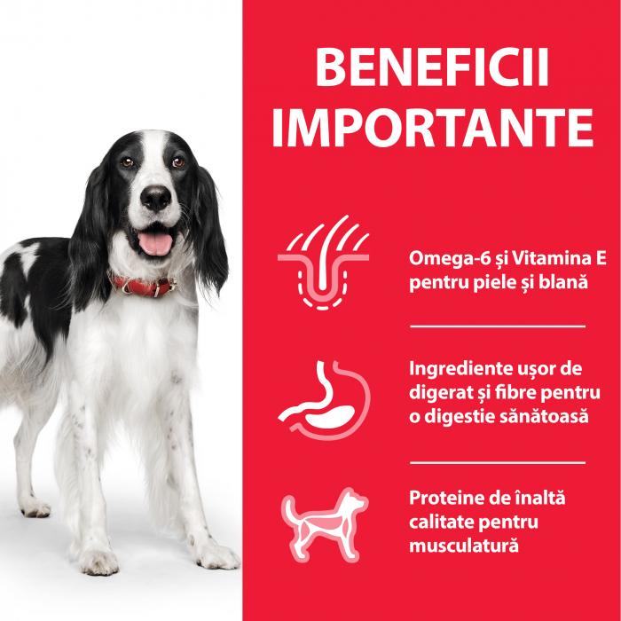 HILL'S SP ADULT  hrană pentru câini cu pui 370 g (conservă) 2