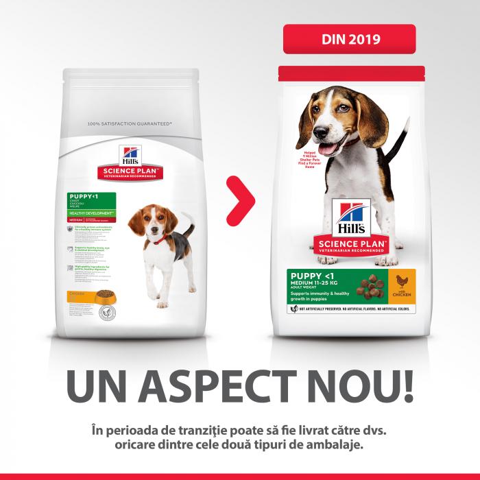 Hill's SP Puppy Medium hrana pentru caini cu pui 14 kg 4