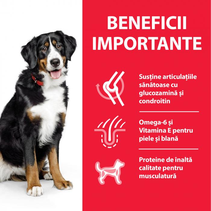 HILLS SP Canine Adult Large 25kg+ cu Pui 14kg [3]