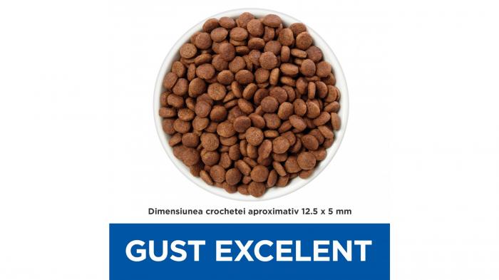 Hill's Prescription Diet Gastrointestinal Biome hrană pentru câini 10 kg 1