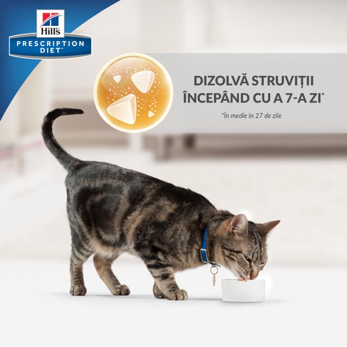 Hrana uscata dieta pentru pisici Hills PD C/D Multicare Chicken 10 kg 6