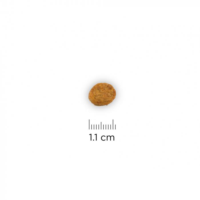 hrana dieta intestinala [1]