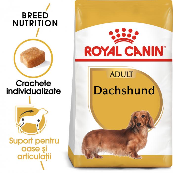 Royal Canin Dachshund Adult hrana uscata caine Teckel, 1.5 kg 0