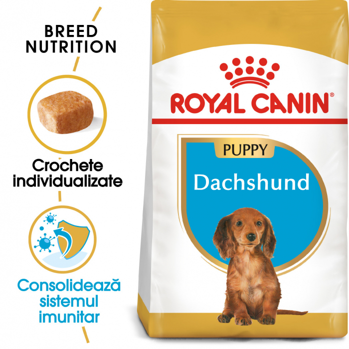Royal Canin Dachshund Puppy hrana uscata caine junior Teckel, 1.5 kg 0