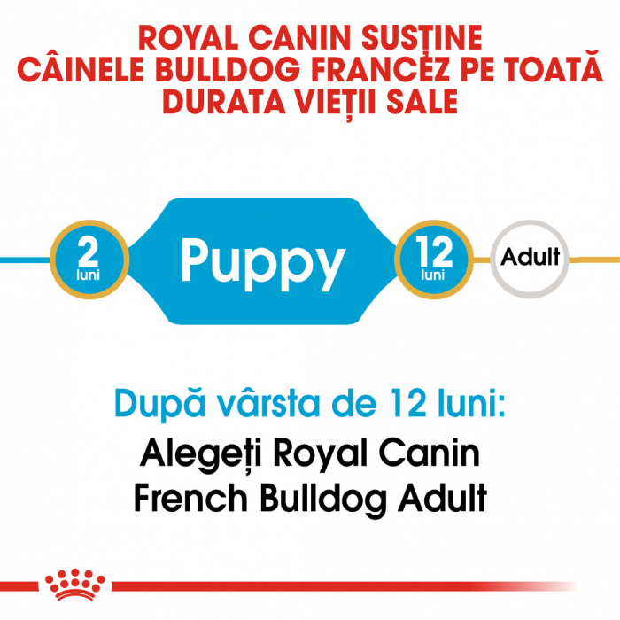 Royal Canin French Bulldog Puppy hrana uscata caine junior, 3 kg 1