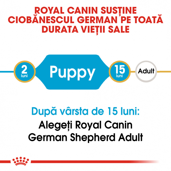 Royal Canin German Shepherd Puppy  hrana uscata caine junior Ciobanesc German, 3 kg 1