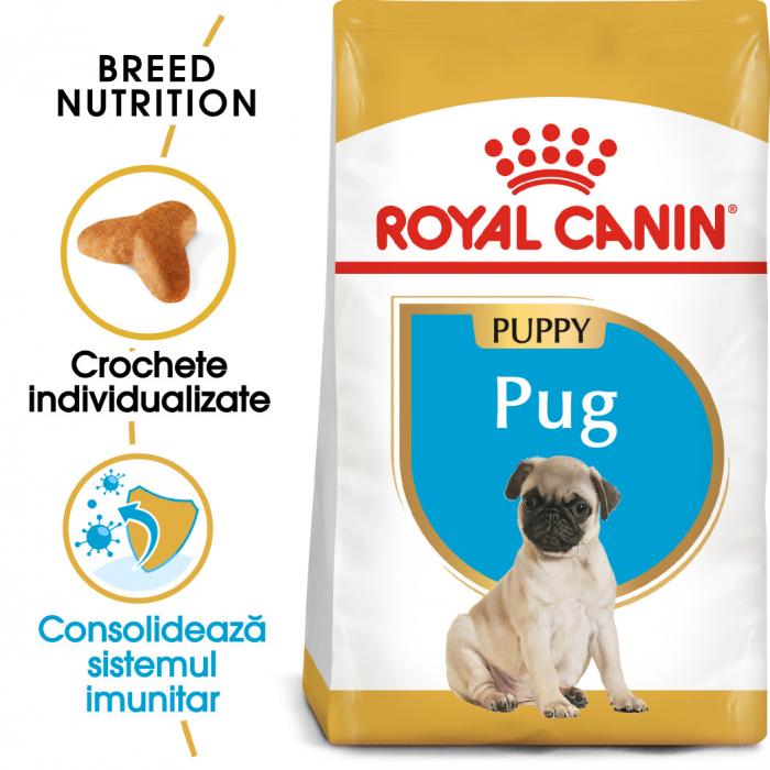 Royal Canin Pug Puppy hrana uscata caine junior, 1.5 kg 0