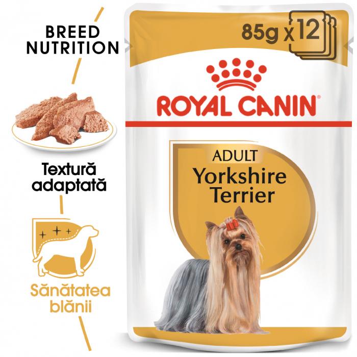 Royal Canin Yorkshire Terrier Adult hrana umeda caine, 12 x 85 g 0