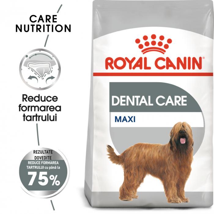 Royal Canin Maxi Dental Care Adult hrana uscata caine pentru reducerea formarii tartrului, 9 kg 0