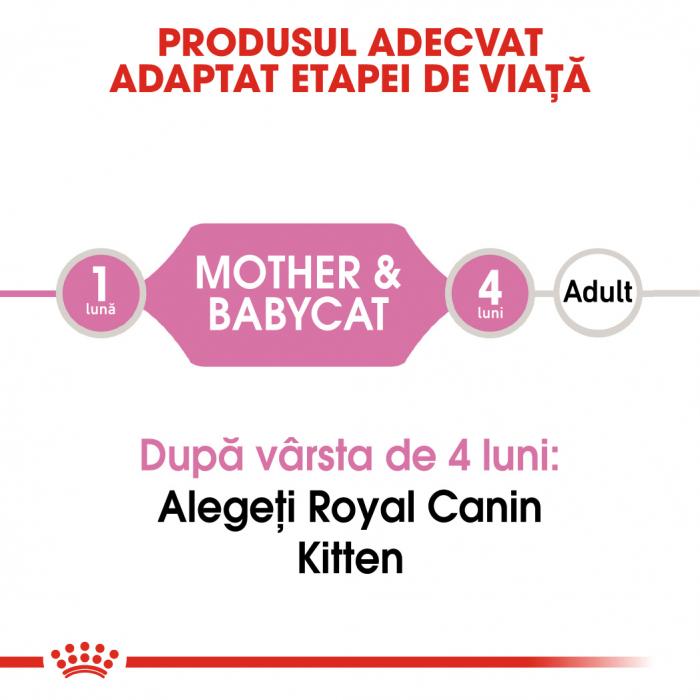 Royal Canin Mother & BabyCat hrana umeda pisica mama si puii pana la 4 luni, 195 g 1