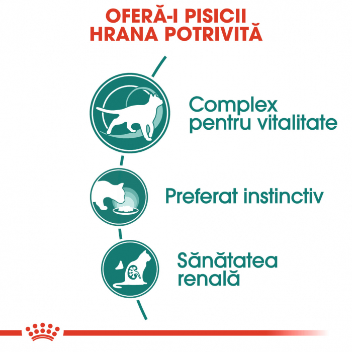 Royal Canin Instinctive 7+ hrana umeda in aspic pentru pisica senior, 12 x 85 g 2