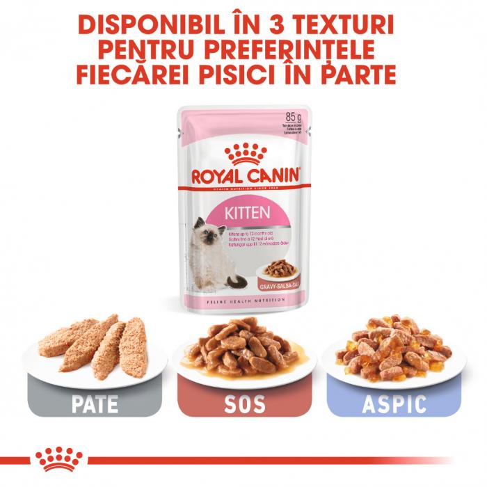 Royal Canin Kitten Instinctive In Gravy hrana umeda in sos pentru pisica, 12 x 85 g 5