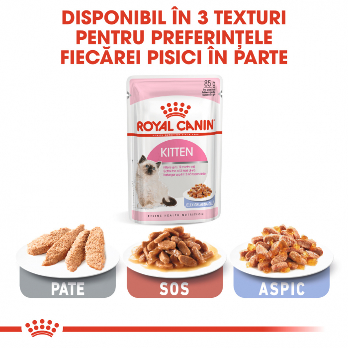 Royal Canin Kitten Instinctive In Jelly hrana umeda in aspic pentru pisica, 12 x 85 g 4