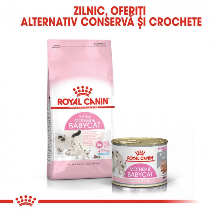 Royal Canin Mother & BabyCat hrana umeda pisica mama si puii pana la 4 luni, 195 g 6
