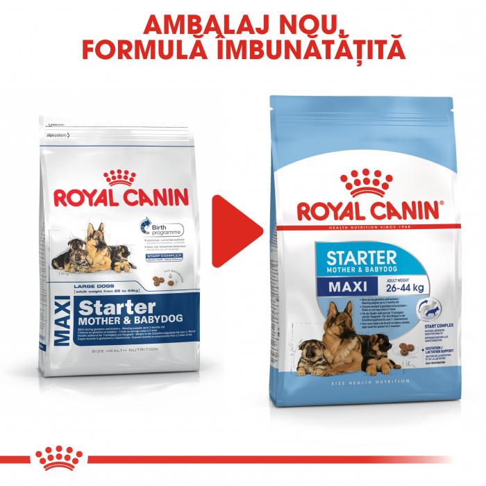 Royal Canin Maxi Starter Mother & Babydog gestatie/ lactatie pui hrana uscata caine, 15 kg 6