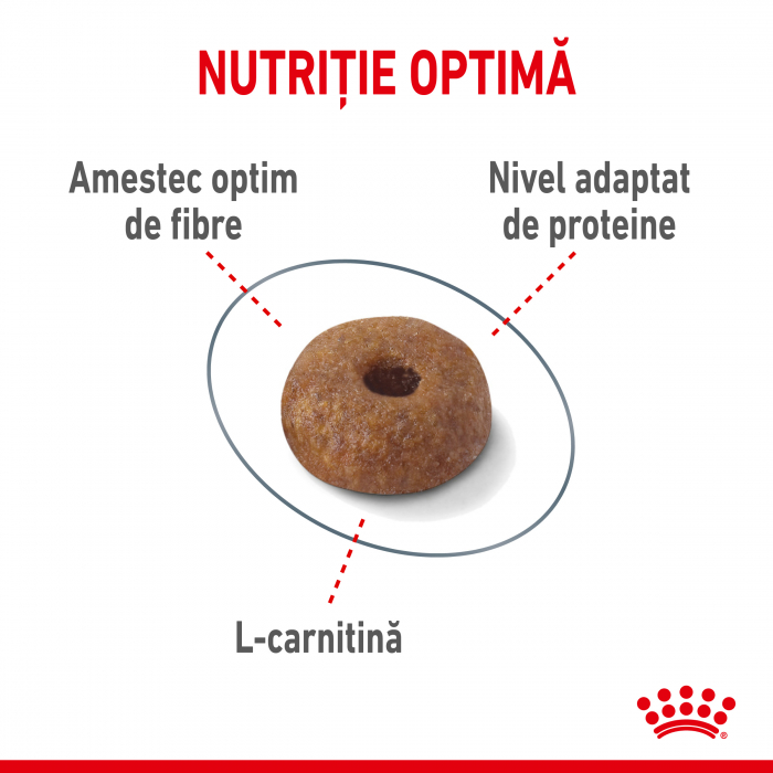 Royal Canin Light Weight Care Adult  hrana uscata pisica limitarea cresterii in greutate, 10 kg 3