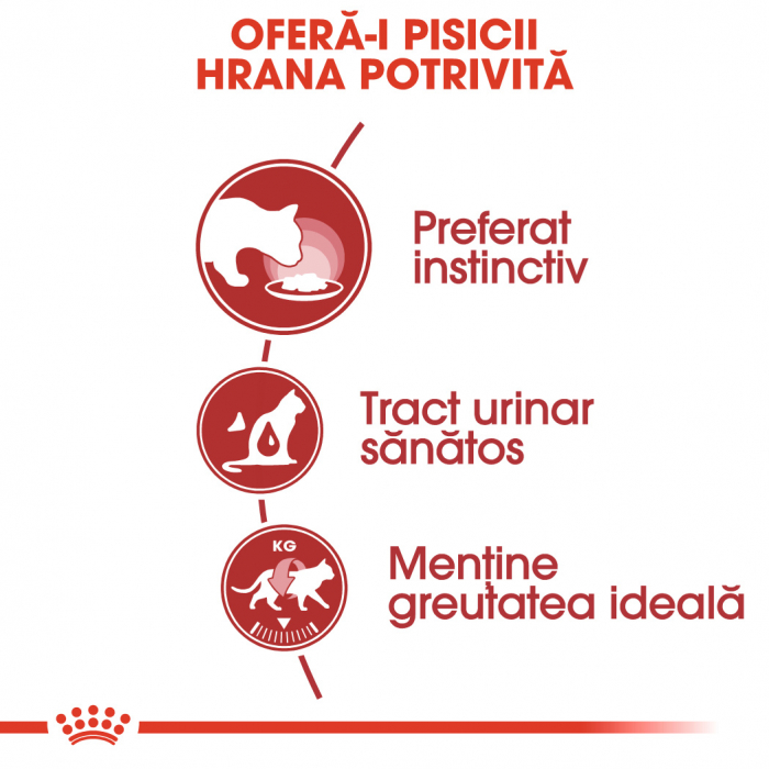 Royal Canin Instinctive In Gravy Adult hrana umeda in sos pentru pisica, 12 x 85 g 2