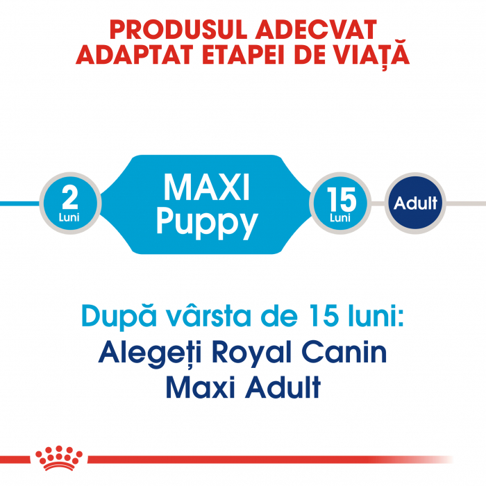 Royal Canin Maxi Puppy hrana uscata caine junior, 4 kg 4