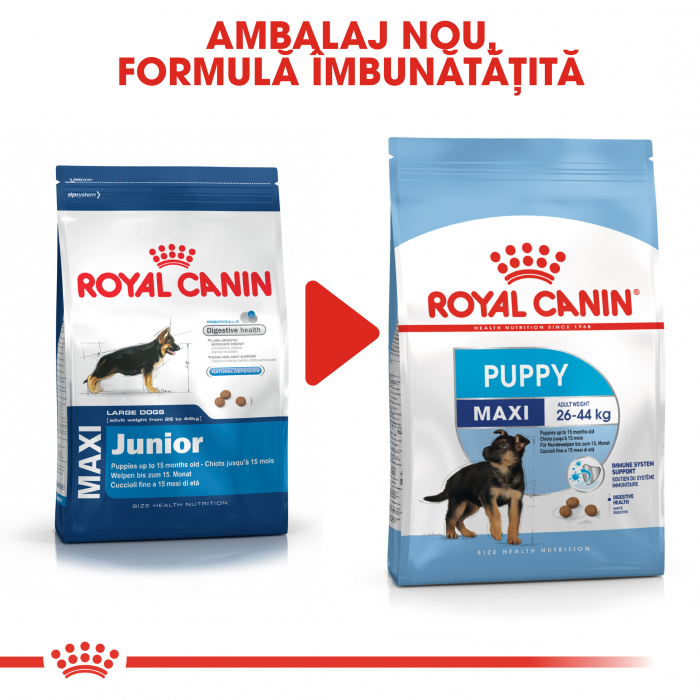 Royal Canin Maxi Puppy hrana uscata caine junior, 4 kg 1