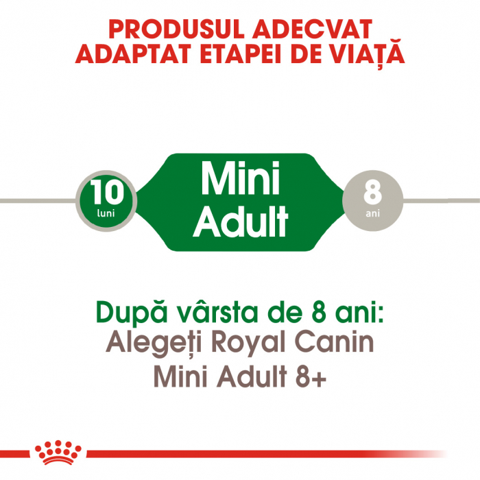 Royal Canin Mini Adult hrana uscata caine, 2 kg 2