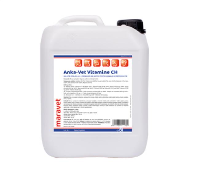 Supliment vitamino-mineral pentru animale Anka Vet Vitamin CH 5 L [0]