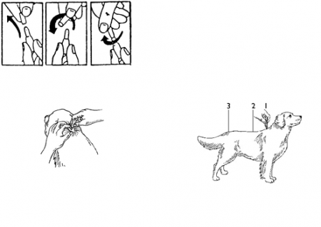 Deparazitare externa/interna pentru caini Advocate Dog 10-25 kg cutie cu 3 pipete1
