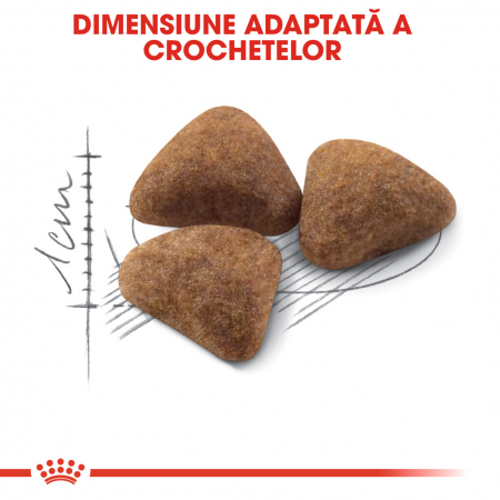 Royal Canin Indoor Adult hrana uscata pisica de interior, 10 kg3