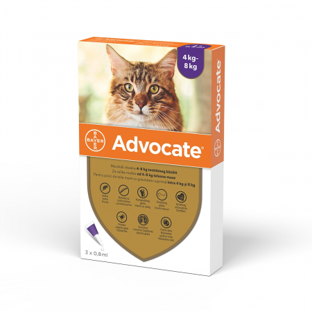 Deparazitare externa pisici, Advocate Cat 4-8 kg x 3 pipete0