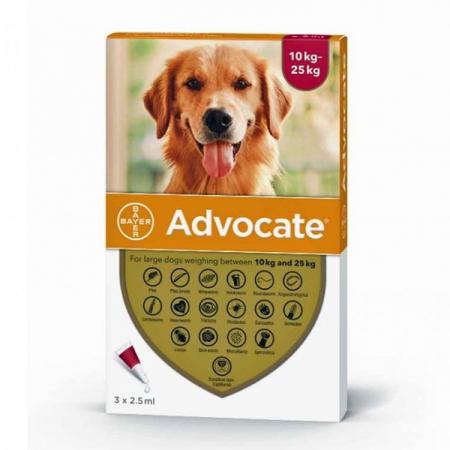 Deparazitare externa/interna pentru caini Advocate Dog 10-25 kg cutie cu 3 pipete0