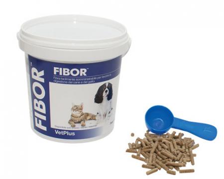 Fibor 500g, supliment pentru digestie1