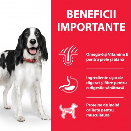 HILL'S SP ADULT  hrană pentru câini cu pui 370 g (conservă)2