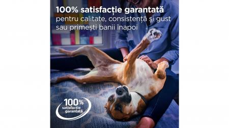 Hill's Prescription Diet Gastrointestinal Biome hrană pentru câini 10 kg5