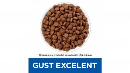 Hill's Prescription Diet Gastrointestinal Biome hrană pentru câini 10 kg1