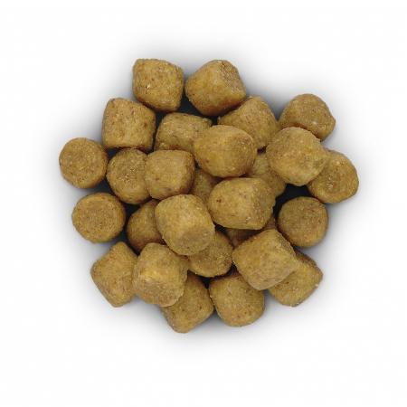 Hill's PD L/D Liver Care  hrana pentru caini 12 kg2