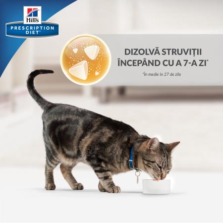 Hrana uscata dieta pentru pisici Hills PD C/D Multicare Chicken 10 kg6