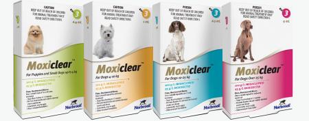 Deparazitare interna si externa pentru caini Moxiclear Dog XL 25-40 kg cutie cu 3 pipete1