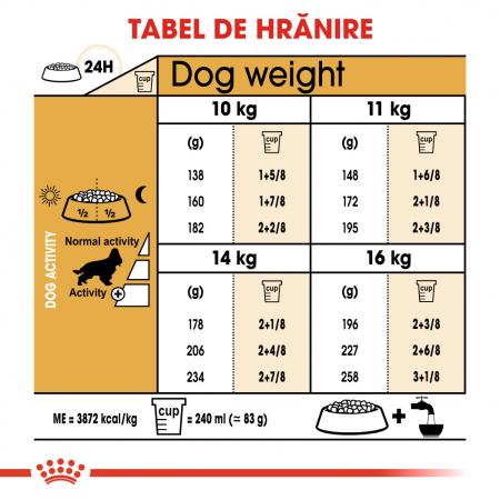 Royal Canin Cocker Adult hrana uscata caine, 3 kg5