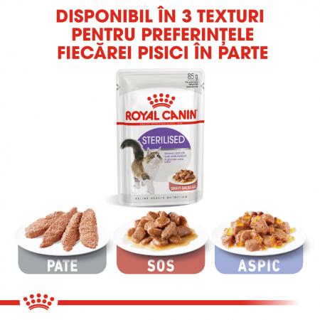 Royal Canin Sterilised Adult hrana umeda in sos pisica sterilizata, 12 x 85 g4