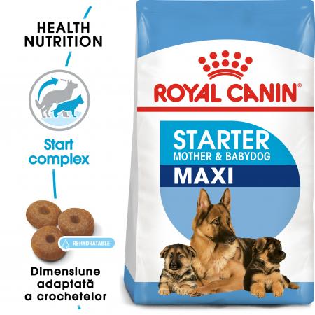 Royal Canin Maxi Starter Mother & Babydog gestatie/ lactatie pui hrana uscata caine, 15 kg0