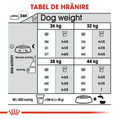 Royal Canin Maxi Dental Care Adult hrana uscata caine pentru reducerea formarii tartrului, 9 kg1