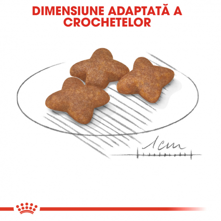 Royal Canin Mini Adult hrana uscata caine, 2 kg4
