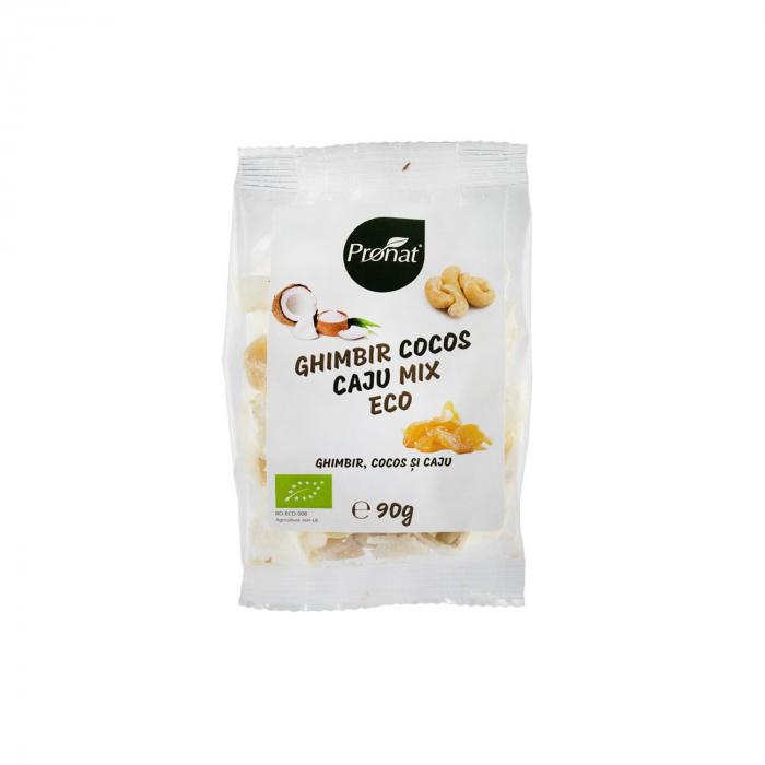 Mix BIO cu ghimbir, cocos si caju 90 g [0]