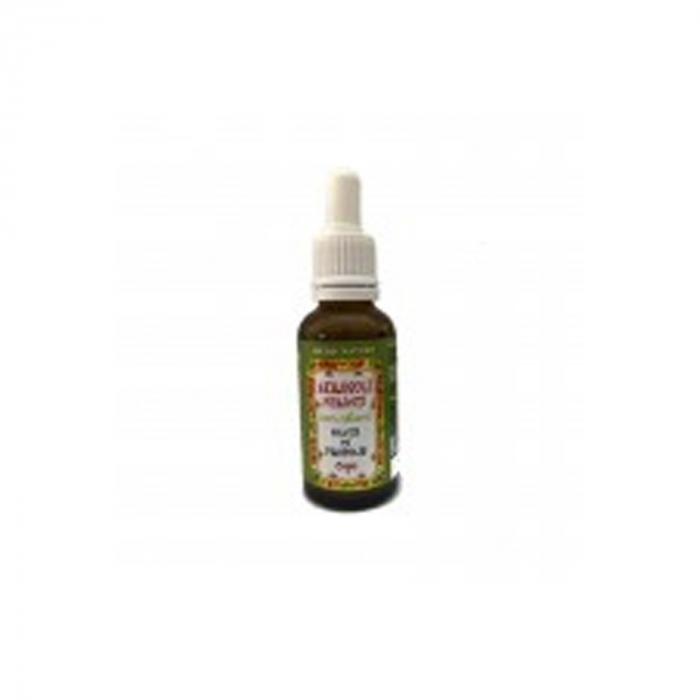 Solutie pentru aerosoli cu propolis (aerosoli fericiti) 30ml [0]