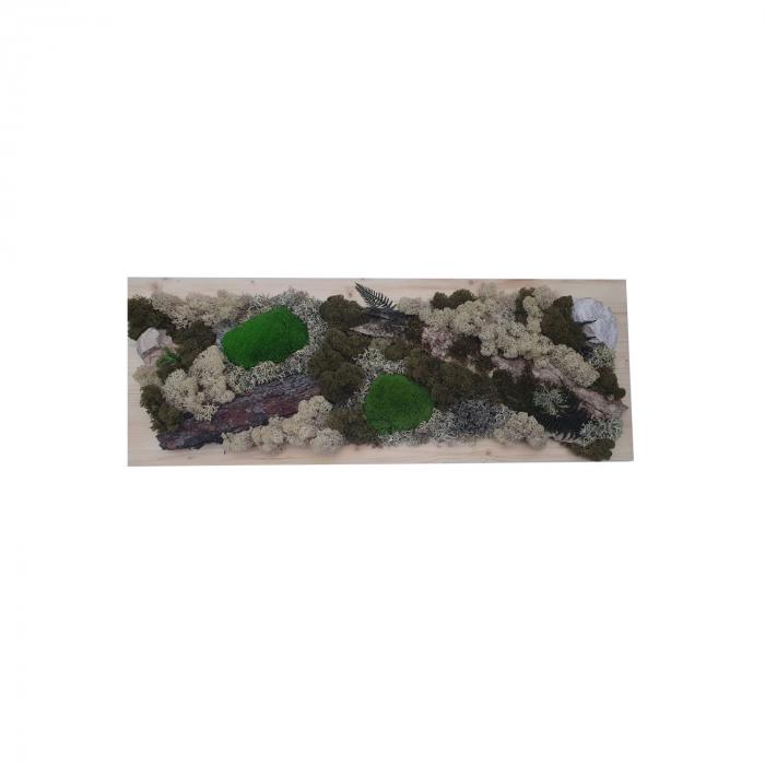 Tablou Iarna cu licheni stabilizati [0]
