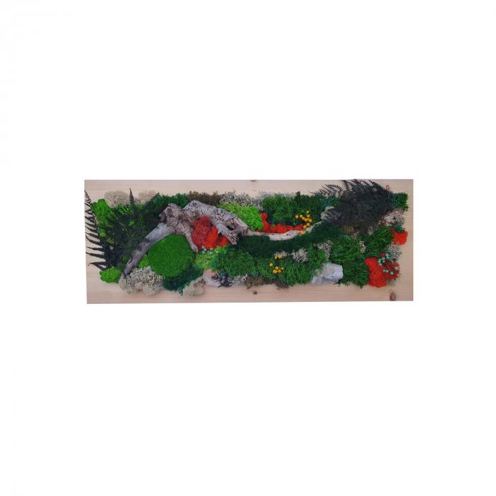 Tablou Primavara cu licheni stabilizati. [0]