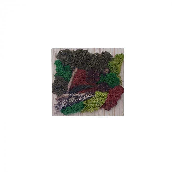 Tablou Toamna cu licheni stabilizati [0]