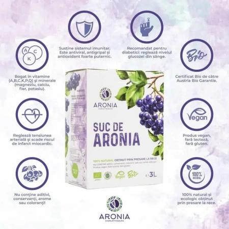 Suc de aronia ecologic 3 litri [1]