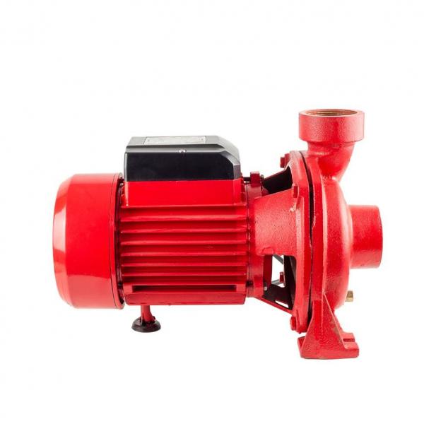 Pompa suprafata centrifugala Joka, pentru irigatii, 2 tol, 1500W, 2.1 bar 1