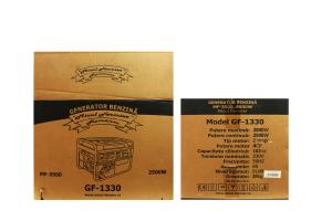 Generator pe benzina Micul Fermier, MF-2500, 2200W [5]